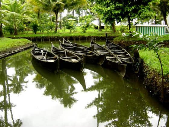 Kerala Country Boats