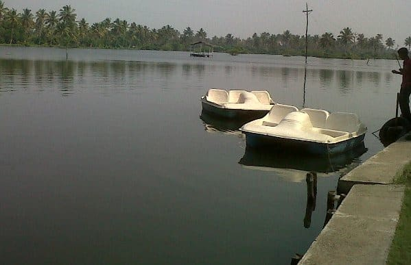 Boating at Njarakkal Backwaters
