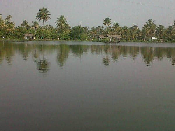 Njarrakal Backwaters
