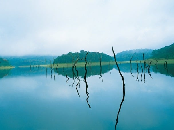 Thekkkady, Periyar Wildlife Sanctuary