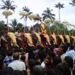 Elephants and Kerala Culture
