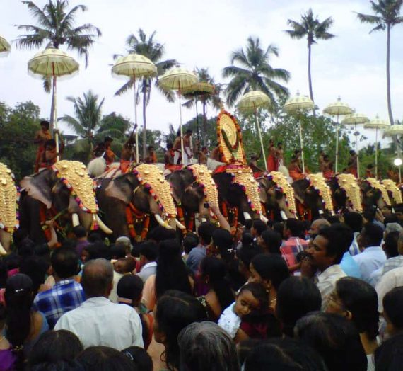 Elephants and Kerala Culture