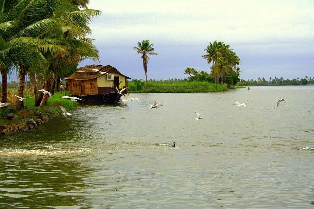 Romancing on Kerala Backwaters