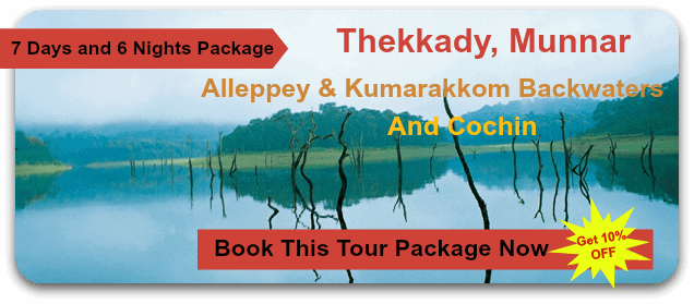 thekkkady-munnar-honeymoon-package