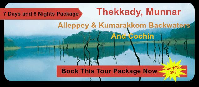 thekkkady-munnar-honeymoon-package