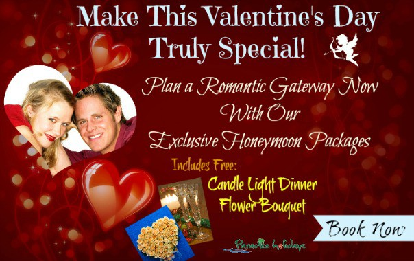 Valentines Day Special Packages to Kerala