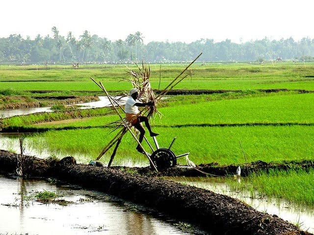 Farmer working on his water wheel