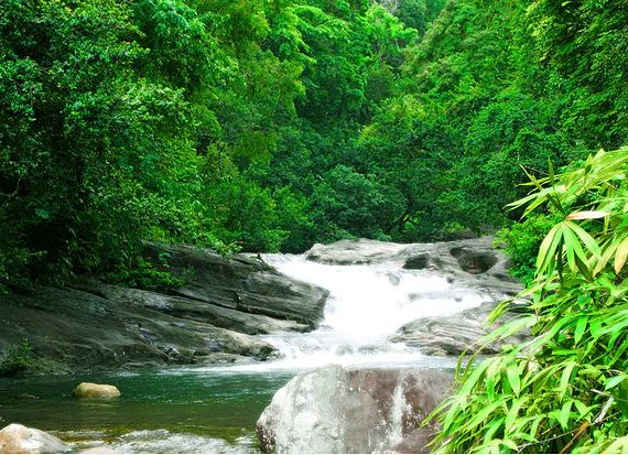 5 Reasons that Make Kerala an Ideal Holiday Destination