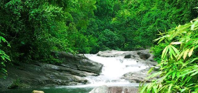 Kerala Waterfalls