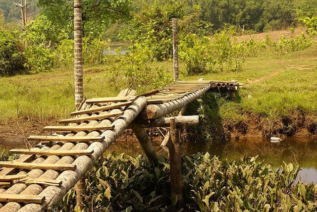 The makeshift coconut bridge