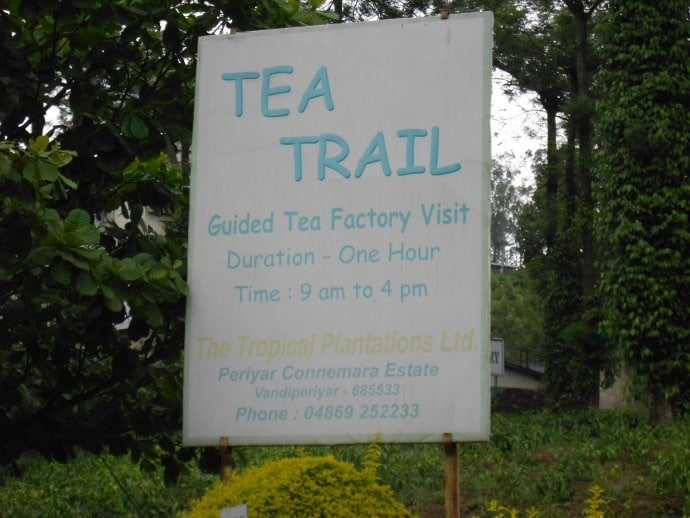 Tea Trail