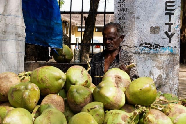Drinking Tender Coconut