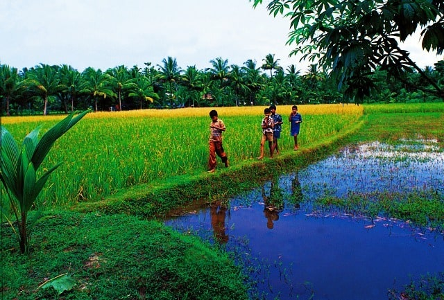 Photography The Beauty Of Kerala In 50 Stunning Images Paradise