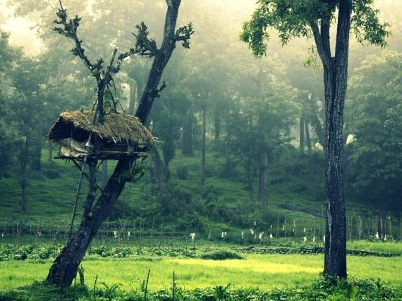 Photography: The Beauty of Kerala in 50 Stunning Images