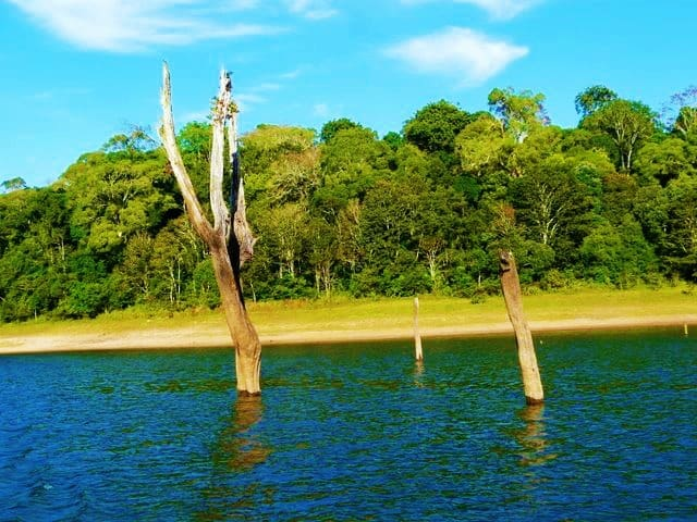 periyar-tiger-reserve