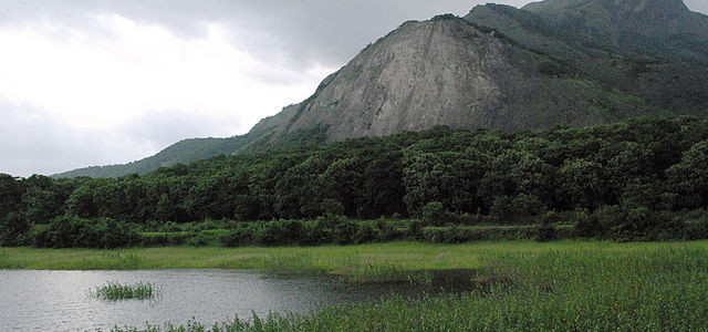 Step into Nature's Lap: Top 10  Ecotourism Spots in Kerala