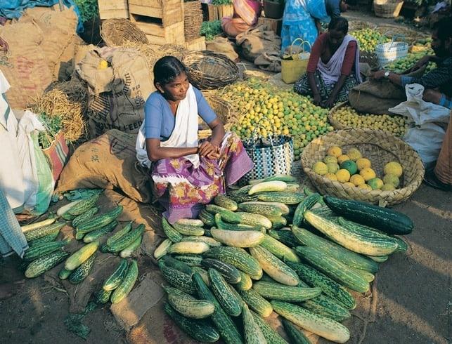 Kerala Market Place