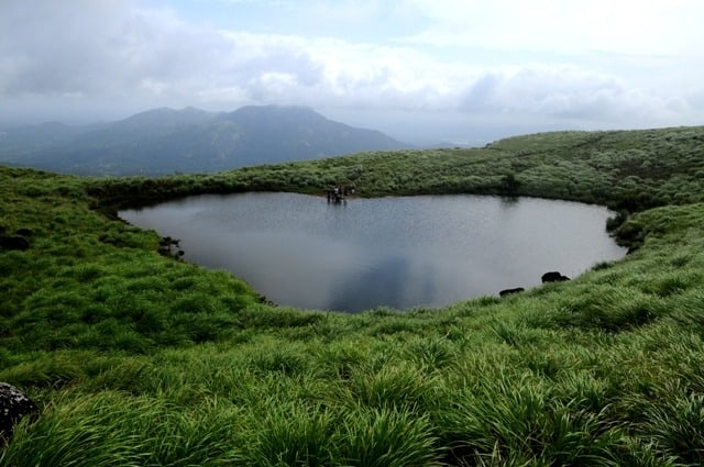 Heart shaped pond on the way to Chembra Peak, Wayanad