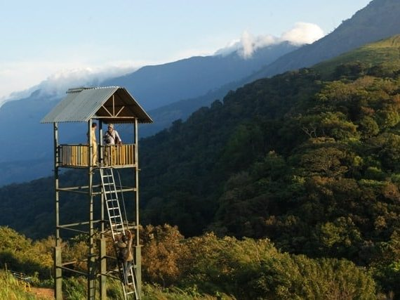 Top Tourist Places in Kerala – The Ultimate List