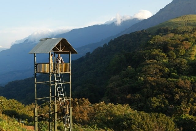 Hill Stations In Kerala
