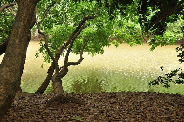 Kuruva islands On Kabini River