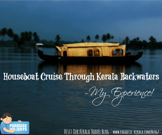 Houseboat Cruise Through Kerala Backwaters - My Experience!