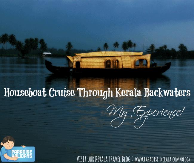 Houseboat Cruise Through Kerala Backwaters - My Experience!