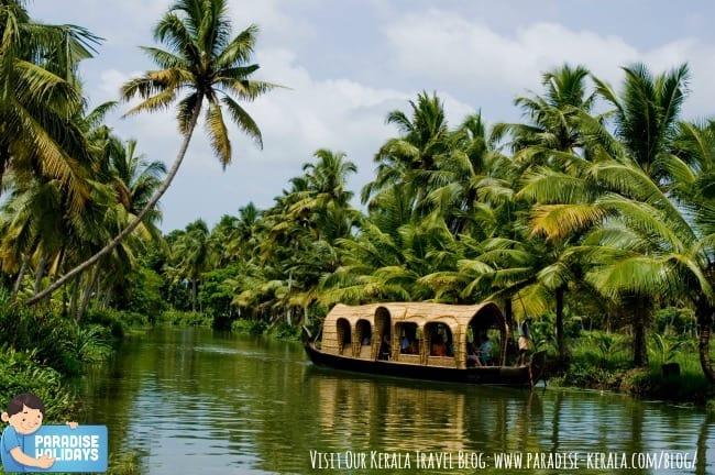 Houseboat Journey Through Kerala Backwaters