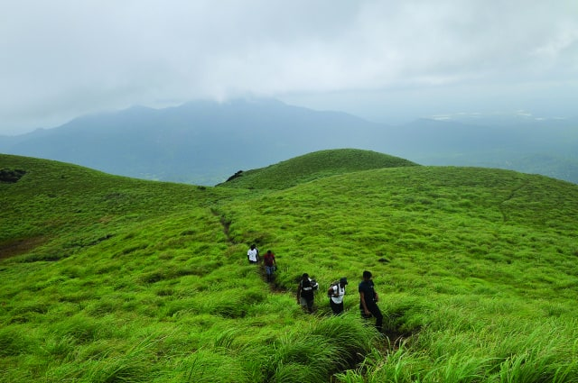 Trekking through Chembra Peak