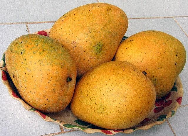 Mangoes in Kerala