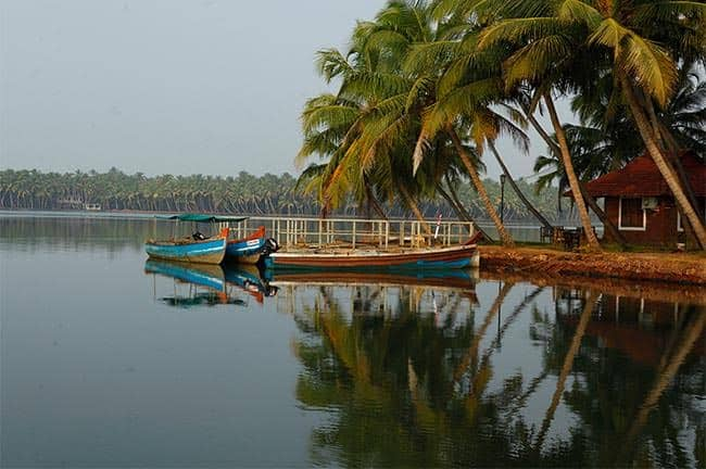 Backwater Kasaragod
