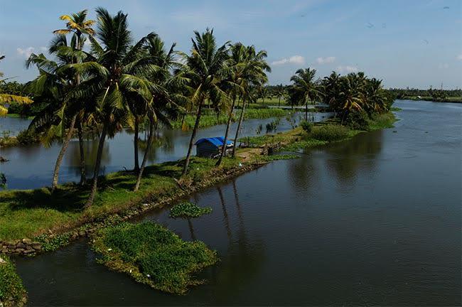 Backwater Kochi