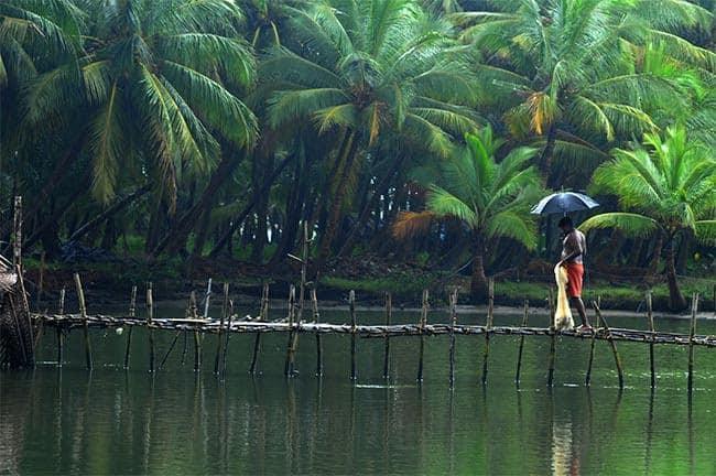 Kasaragod Backwaters