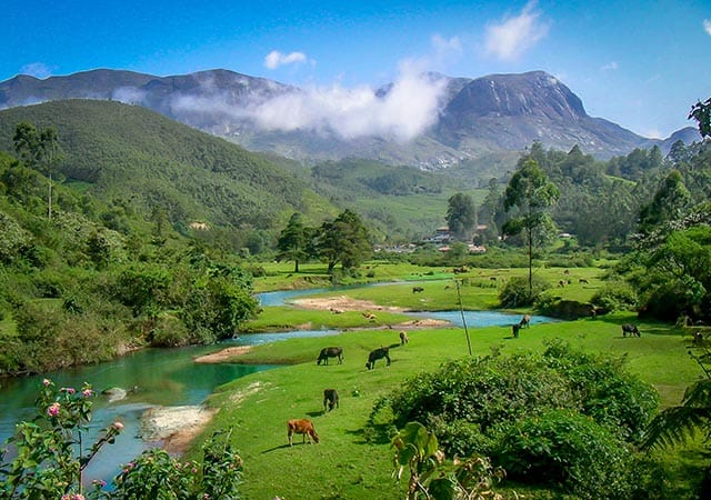 Munnar during the May to June season – A good time