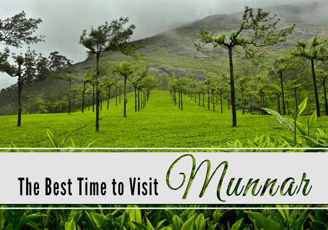 visit-Munnar