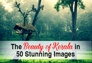 The  beauty of Kerala in 50 awesome images