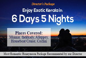 Directors Package- Exclusive Kerala Honeymoon Package