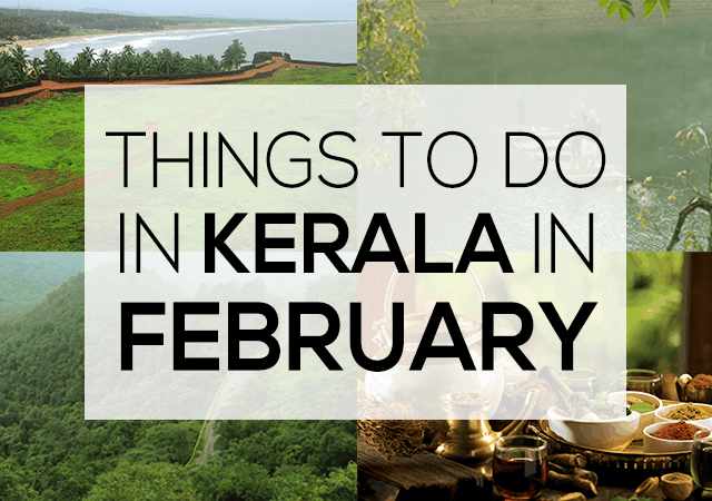 Things to do in Kerala in February