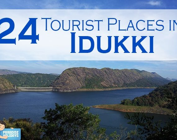 24 Tourist Places in Idukki