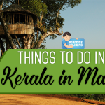 Things to do in Kerala in May