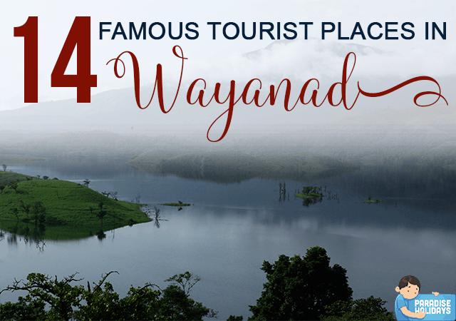 14 Famous Tourist Places in Wayanad