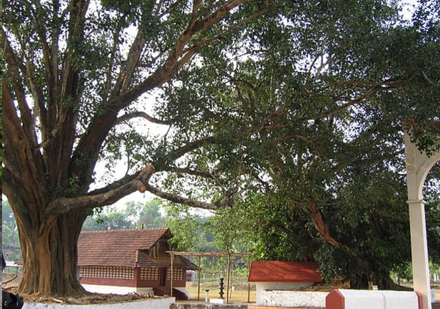 Valliyoorkkavu Temple