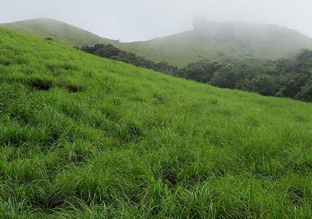 Ranipuram Hills