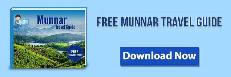 Free Munnar Travel Guide