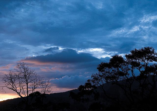 Nelliyampathy-Hills-Palakkad