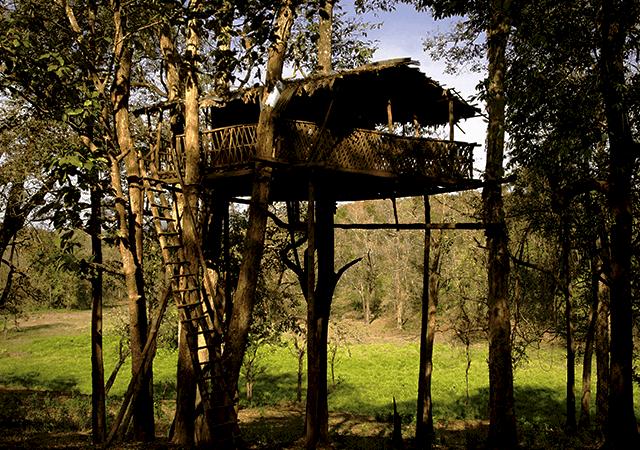 Parambikulam-Wildlife-Sanctuary