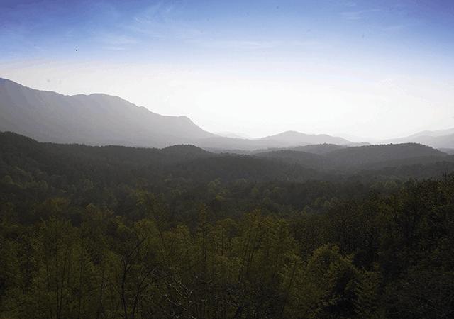 Silent-Valley-Palakkad