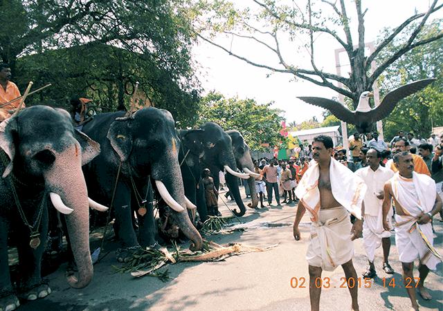 Guruvayoor Aanayottam