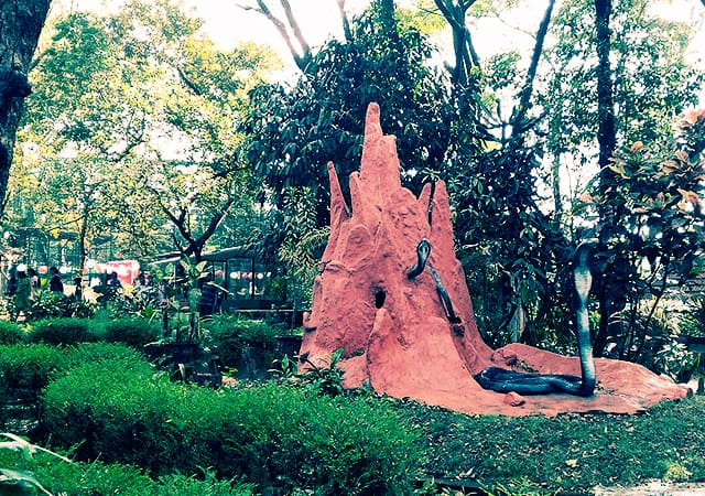 Parassinikkadavu-Snake-Park