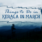 Things to Do in Kerala in March